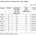 Table 7:  Employment pattern by gender in the study villages