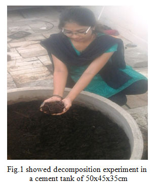Essay on vermiculture