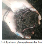 vermicomposting research paper