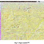 Fig.7. Paper mulch [20]