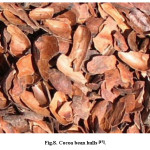 Fig.8. Cocoa bean hulls [17].