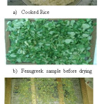 Figure 9: Rice cooked in 2 Hrs on 24th November 2016 and Dried fenugreek leaves after 9 Hrs of drying on 24th and 25th November 2016