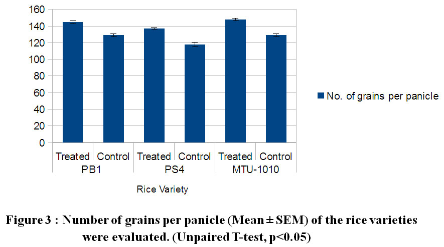 Impact of Microbial Products on the Biometric Parameters and
